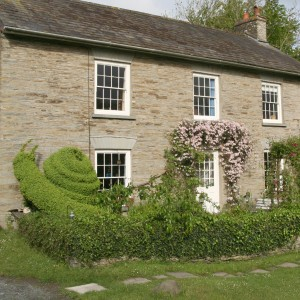 Penwenallt Farm B&B showing Snail topiary and Clematis Montana arch.