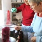 Cochineal being used on a dyeing course